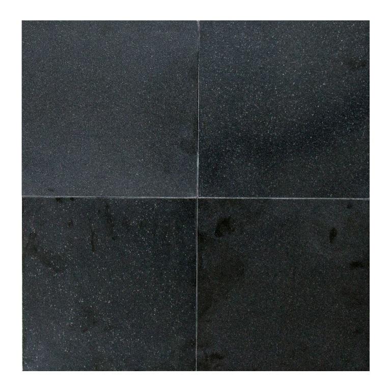 Absolute Black 24x24 Honed Granite