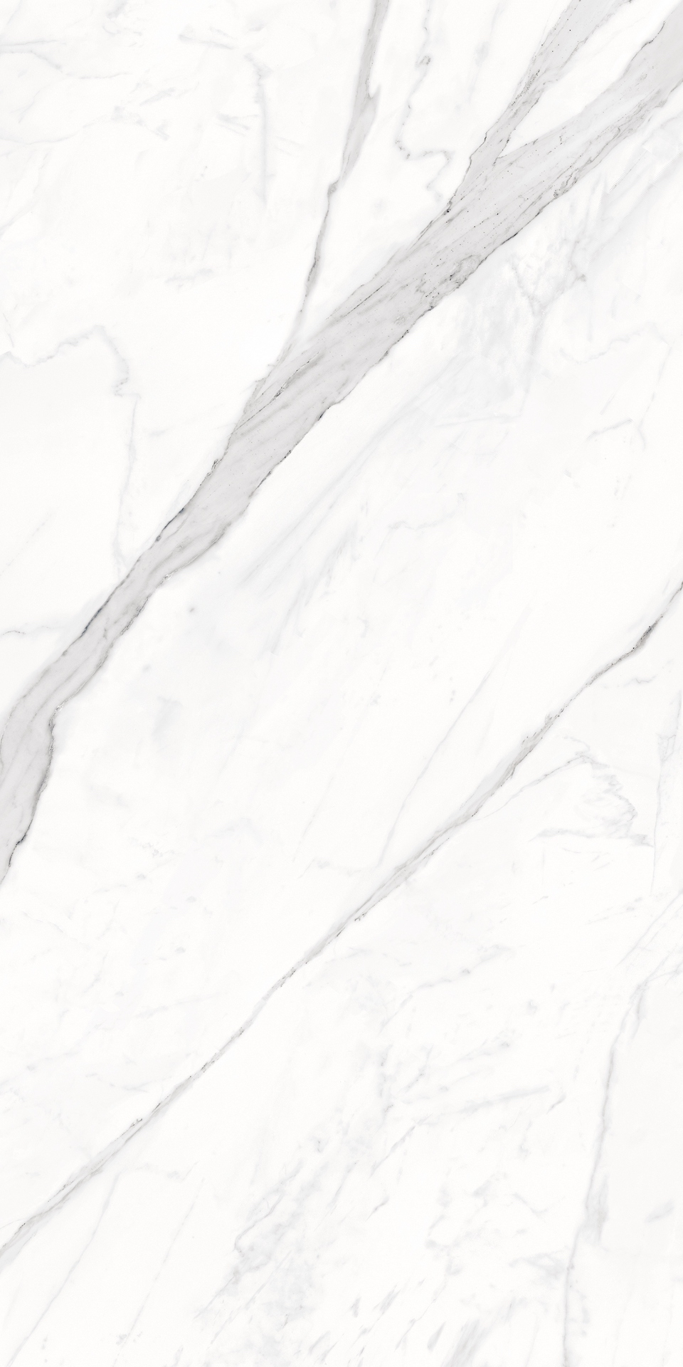 Bianco Calacatta 24x48 Polished Large Rectified Porcelain Tile