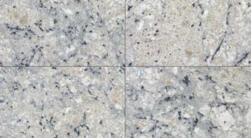 Bianco Romano 12x24 Polished Granite