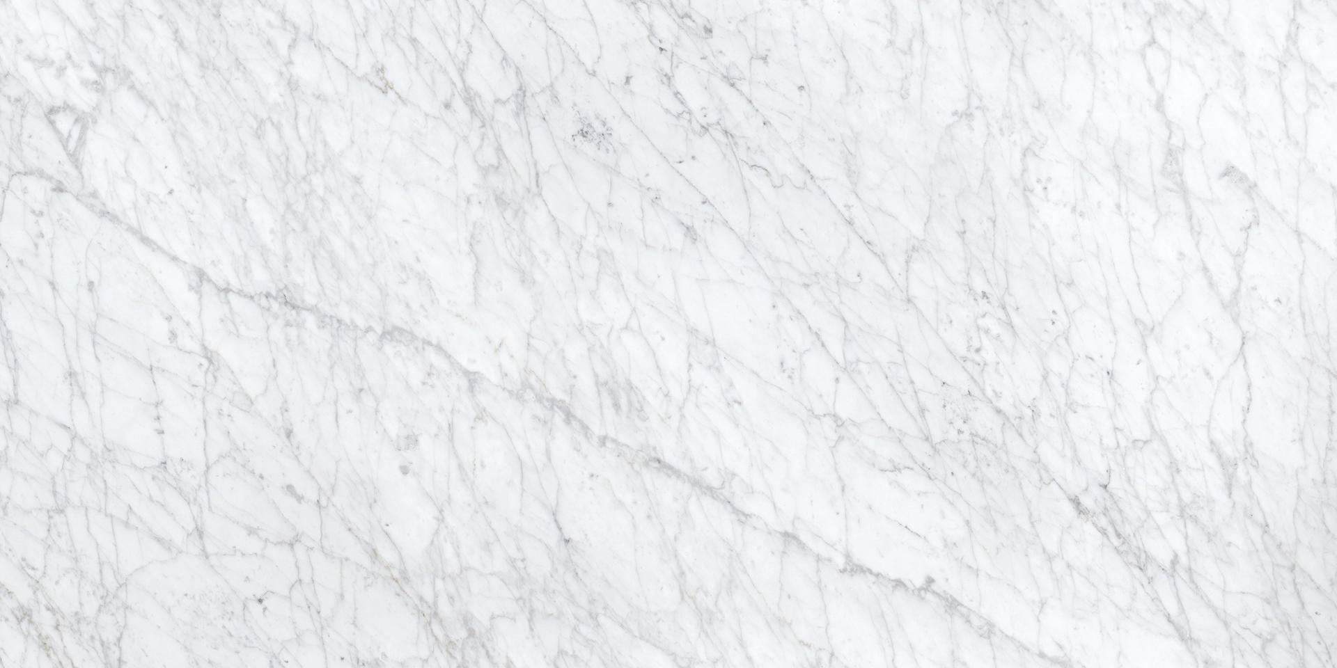 Porcelaino Carrara White 12x24 Glazed Matte