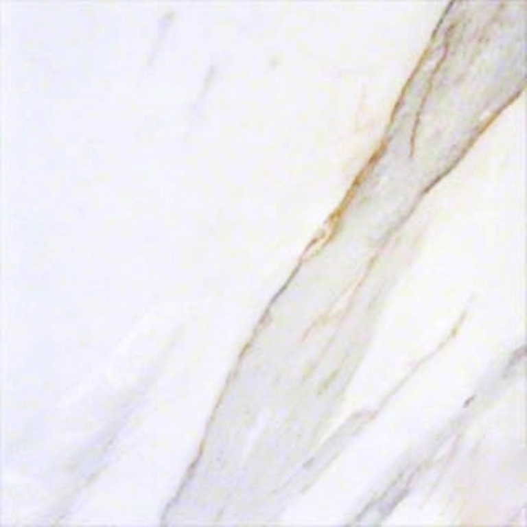 Pietra Calacatta 24x24 Matte Porcelain