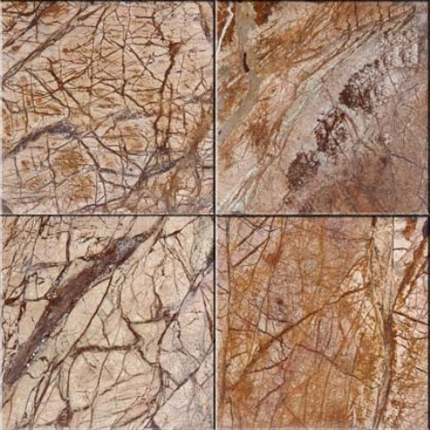 Rain Forest Brown 12X12 Polished