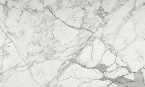 Wall And Tile Statuary Venato 12x24 Polished Marble