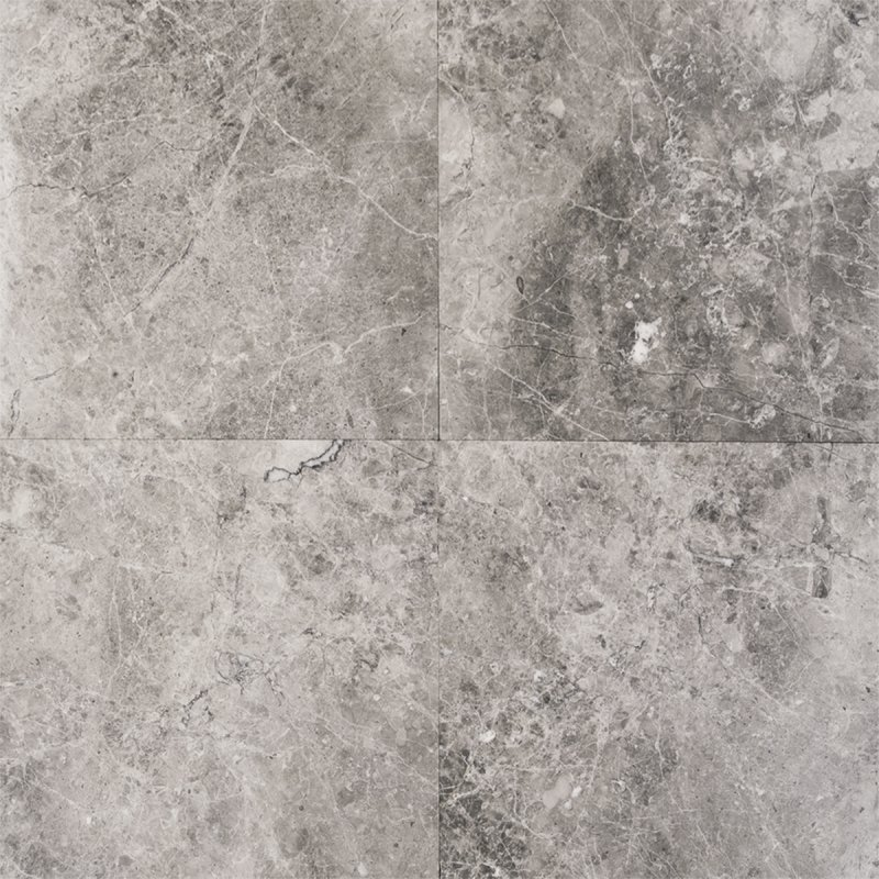 Tundra Gray 12x12 Polished Marble